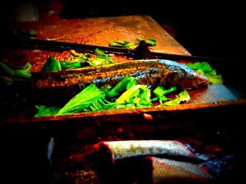 Fresh Fish - China